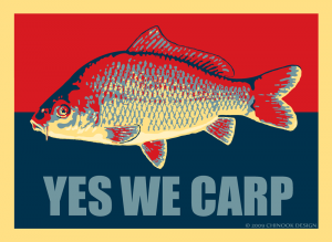 "Common carp illustration with the phrase ""Yes We Carp."""