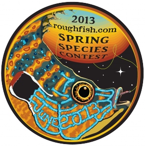 2013 roughfish.com Spring Species Contest button