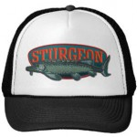 Sturgeon logo hat