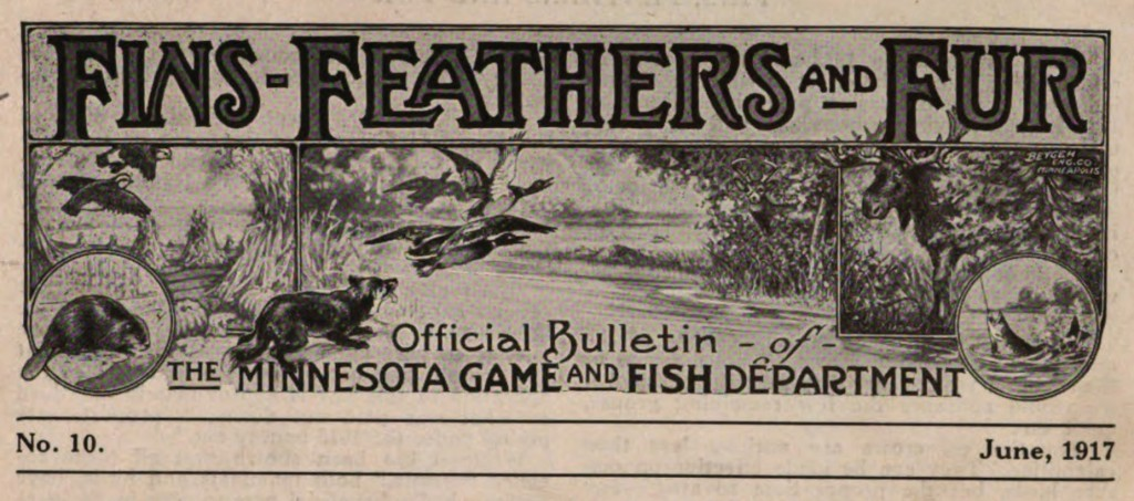 Fins, Feathers and Fun, June 1917